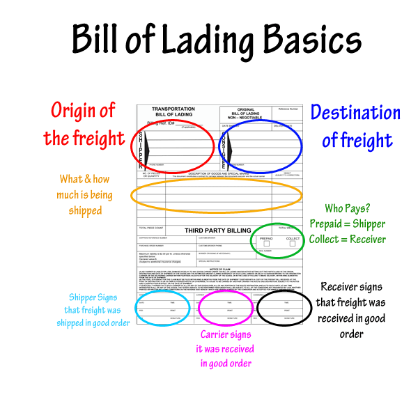 partes fundamentales del bill of landing
