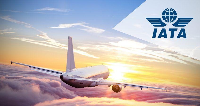 Agente IATA